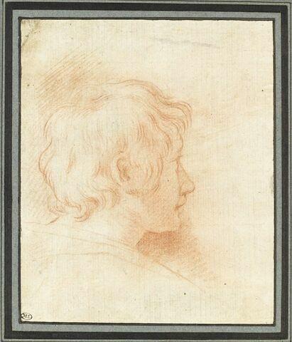 Tête de jeune homme, vue de profil