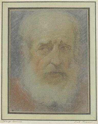 Tête de vieillard, vue de face