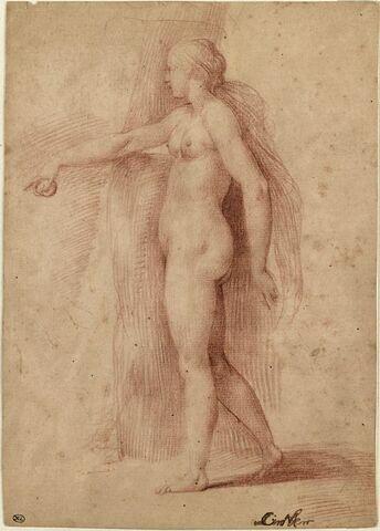 Etude de Vénus pour le jugement de Pâris