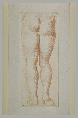 Jambes et fesses d'un homme ou d'une femme, de dos
