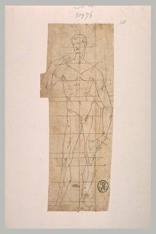 Etudes de proportions du corps humain