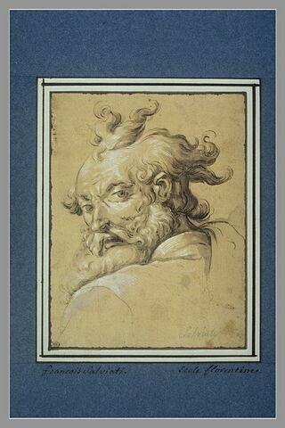 Etude d'une tête d'homme agé : Moïse