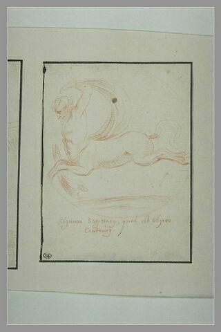 Centaure galopant