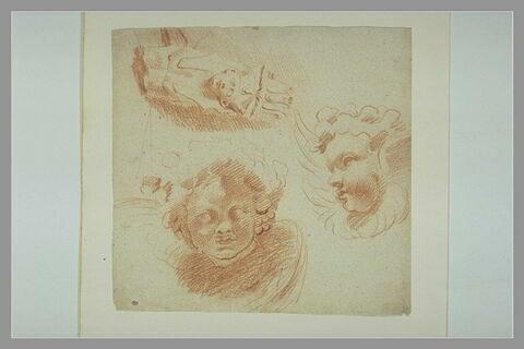 Etude de deux têtes d'anges et de la tête d'un sphinx