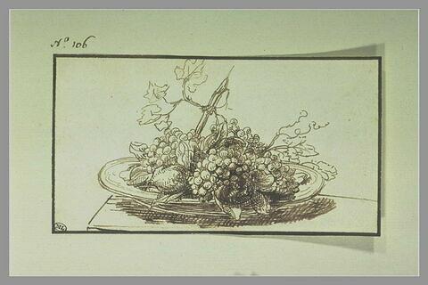 Etude de fruits sur un plateau