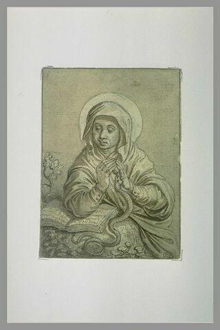 Sainte assise devant un livre, la main gauche mordue par un serpent