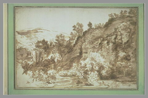 Etude de rochers couverts d'arbustes