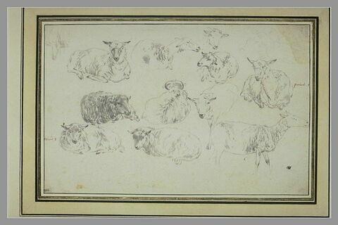 Feuille de dix études de moutons et tête d'un onzième