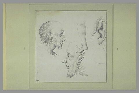 Deux têtes d'hommes, une jambe, une oreille