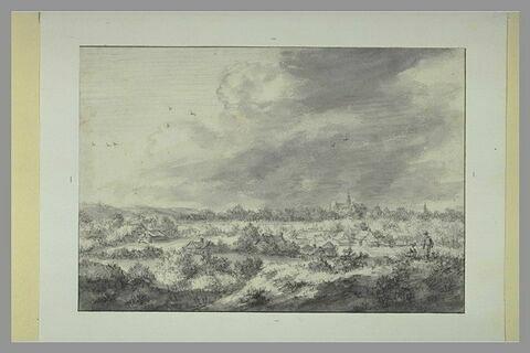 Vue de Haarlem, prise des dunes, du côté sud