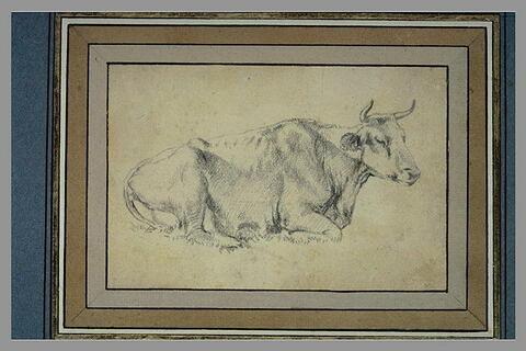 Vache couchée, tournée de profil à droite, les yeux clos