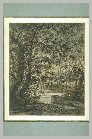 Sous-bois, en hiver, avec ruisseau et passerelle