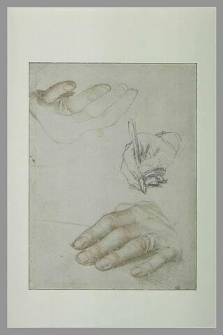 Trois études de mains pour le portrait d'Erasme