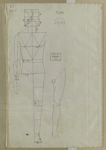 Homme debout, bras tombant, avec lignes de proportions et étude de jambe