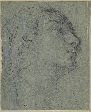Tête de jeune femme, vue de profil, tournée vers la droite