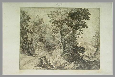 Flanc droit d'une colline boisée avec un sentier et un torrent