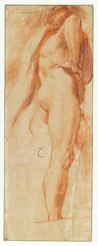 Etude d'homme nu, main droite sur la hanche, de dos, vu de dessous