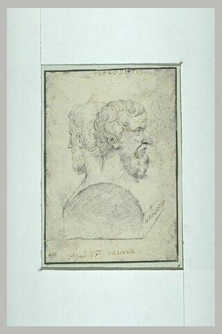 Double buste d'Hérodote
