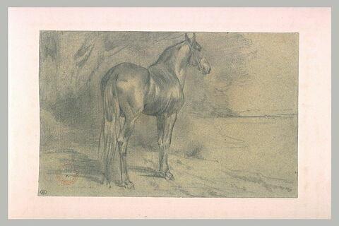 Etude de cheval dans un paysage