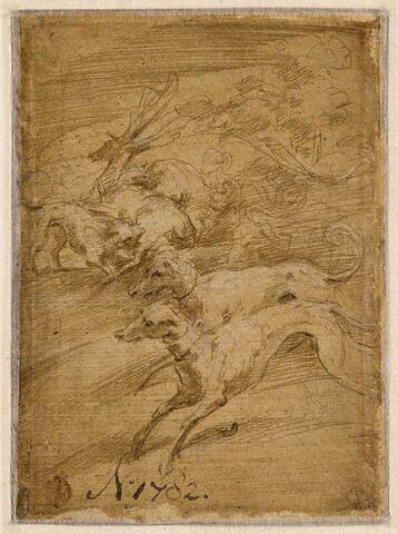 Lévriers poursuivant un cerf