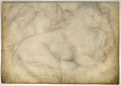 Deux lions, une lionne, deux lionceaux