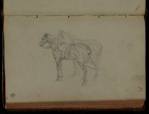 Deux chevaux de poste, vus de profil