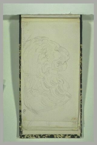 Chéronée, la statue du lion