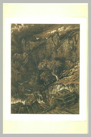 Deux vautours planant au-dessus d'un torrent en Auvergne