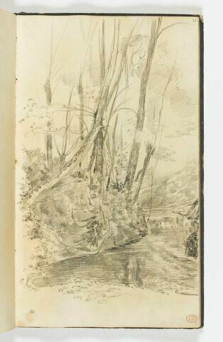 Un cours d'eau aux rives boisées, près de Falaise