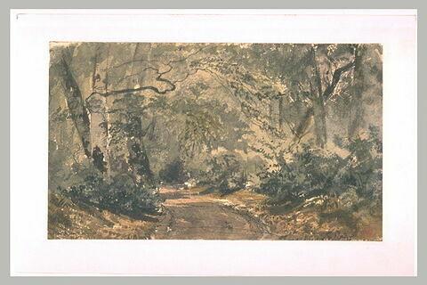 La route des Ligueurs à Fontainebleau