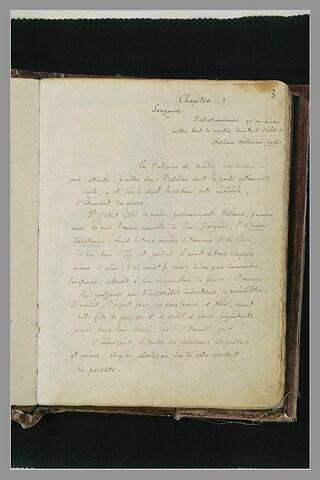 Texte manuscrit : chapitre I, 'Songeries'