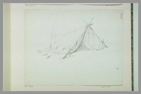 Une tente devant un palmier
