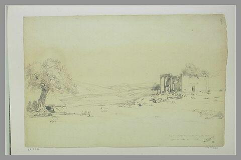 Ruines d'un temple dans un paysage au Liban