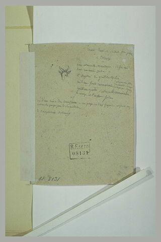 Annotation manuscrite sur Brera ; tête de bouquetin