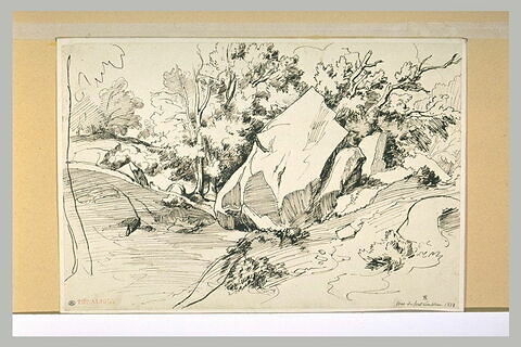 Rochers parmi des arbres