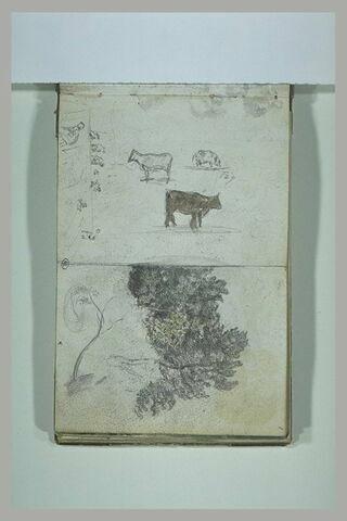 Figures ; vaches ; étude d'arbres