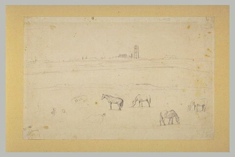 Vue de Dunkerque prise des dunes, avec des chevaux au pré