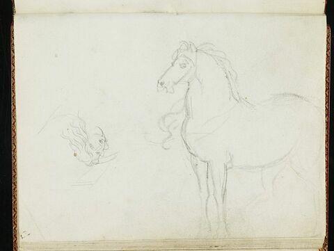 Esquisse d'un cheval, de profil à gauche, et tête de femme