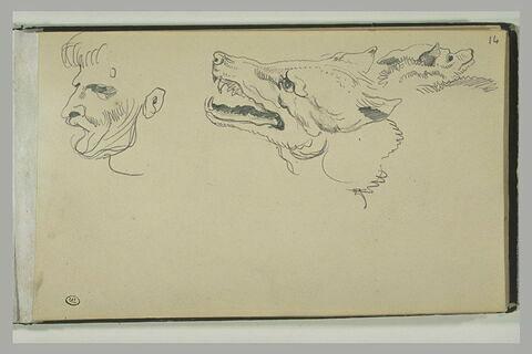 Tête d'homme, et deux têtes de loup