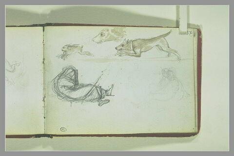 Lièvre poursuivi par un chien, tête de chien, figure, et personnages