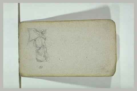 Tête de cheval avec un sac à avoine
