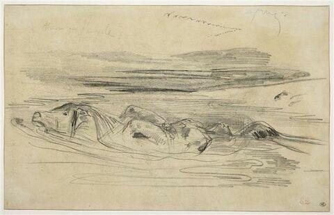 Cheval traversant une rivière avec un homme nu lié sur son dos