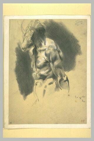 Homme barbu, nu, à mi-corps, de profil à gauche