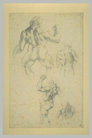 Quatre études d'homme nu, vus de dos