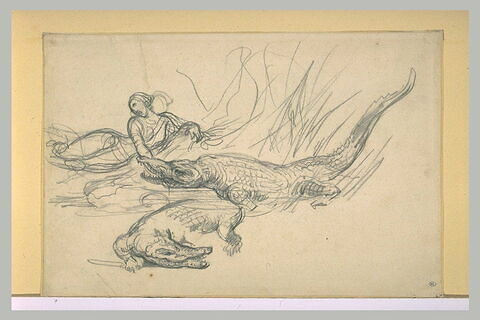 Femme mordue par un crocodile