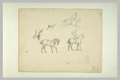 Trois cavaliers, un cheval sellé et un chien