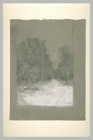 Route couverte de neige traversant un bois