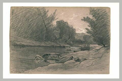 Rivière coulant dans un bois