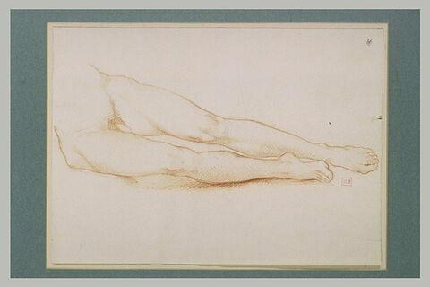 Partie inférieure du corps d'un homme nu