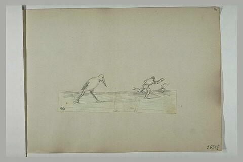 Homme fuyant devant un oiseau échassier